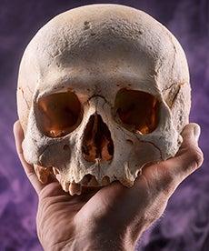 Hamlet_230x276.jpg